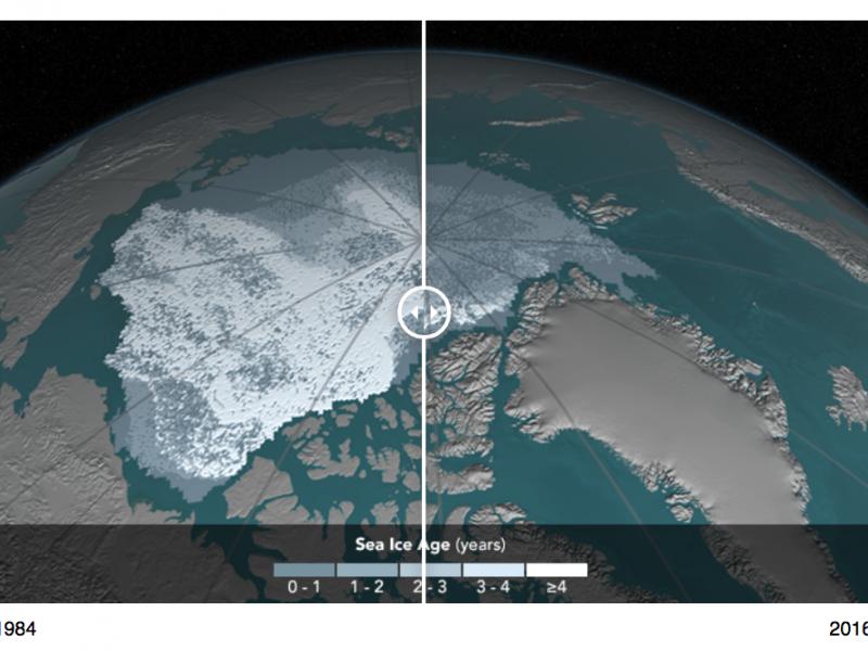 Scioglimento dell'Artico